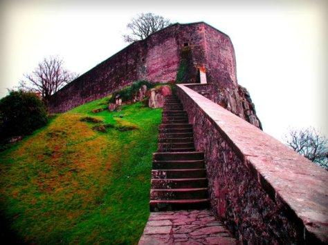 Castle by Jacqueline Fedyk