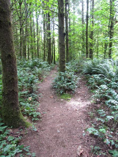 trail travel